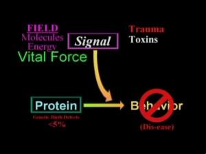 segnalenonpassa