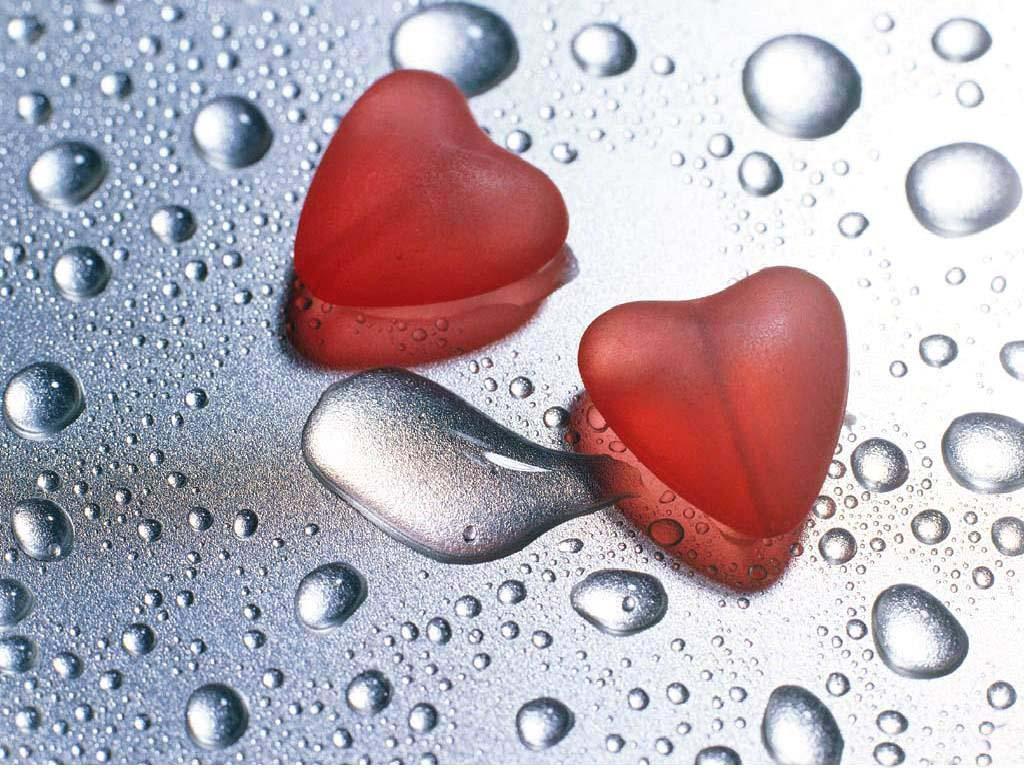 Il coraggio di vivere: l'amore della vita…l'amore per la vita
